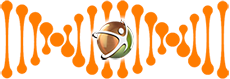 Logomarca da Develloper Desenvolvimento Humano e Empresarial envolta em um DNA